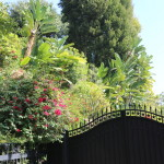 The gate in front of Ringo Stars house
